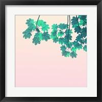 Framed Color Pops 1