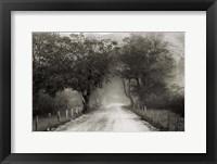 Framed Sparks Lane
