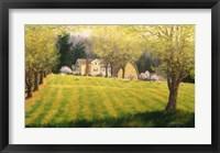 Framed Spring Pastures