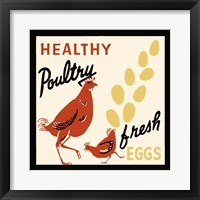 Framed Healthy Poultry-Fresh Eggs