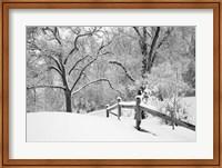 Framed Snowscape, Farmington Hills, Michigan 08