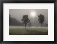 Framed Two Trees & Sunburst, Logan, Ohio 10