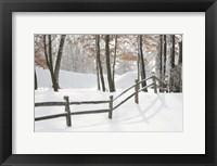 Framed Winter Fence & Shadow, Farmington Hills, Michigan 09