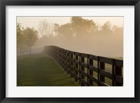 Framed Morning Mist & Fence, Kentucky 08