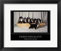 Framed Individuality Motivational