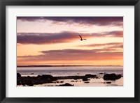 Framed Flying At Sunrise, Sault St. Marie, Michigan 12