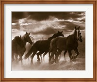 Framed Running Horses And Sunbeams, Rothbury, Michigan