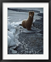 Framed Icy Creek- Mink
