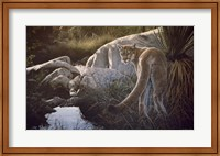 Framed Creekside Cougar