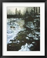 Framed Winter Creek & Whitetails
