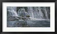 Framed Grizzlies / Falls