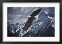 Framed Wings Over Winter