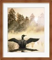 Framed Misty Dawn - Loon