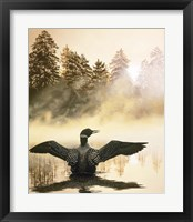 Framed Misty Dawn - Loon