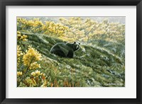 Framed Grizzly In The Blueberries