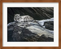 Framed Mountain Monarch