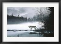 Framed Spring Mist - Gray Wolf