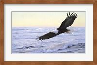 Framed Ocean Dawn- Eagle