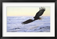 Framed Ocean Dawn- Eagle