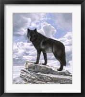 Framed Black Wolf On Skyline