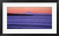 Framed Oak Bay Dawn