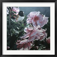 Framed Junco And Camelia