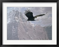 Framed Mountain Flight