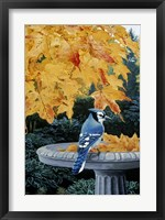 Framed Autumn Birdbath