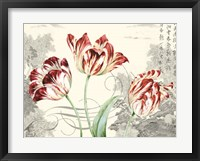 Framed Imperial Tulips