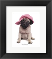 Framed Pug Hat
