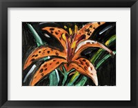 Framed Tiger Lily