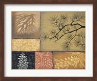 Framed Pine Cones 1