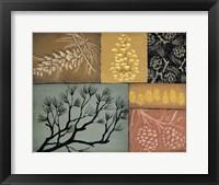 Framed Pine Cones 3
