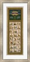 Framed Noah's Ark ABC
