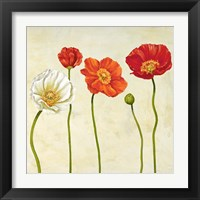 Framed Coquelicots (Detail)