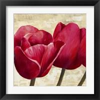 Framed Red Tulips (Detail)