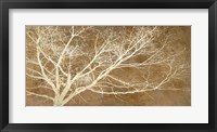 Framed Dream Tree