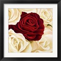 Framed Rose Composition (Detail)