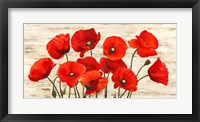 Framed French Poppies