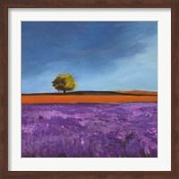 Framed Field of Lavender (Detail)
