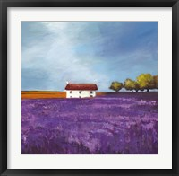 Framed Field of Lavender I
