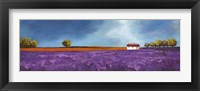 Framed Field of Lavender II