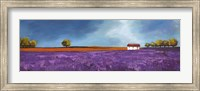 Framed Field of Lavender II
