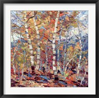 Framed Birch Colors 1