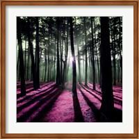 Framed Technicolor Trees 1