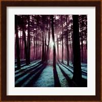 Framed Technicolor Trees 3