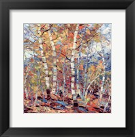 Framed Birch Colors I