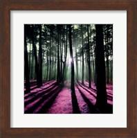 Framed Technicolor Trees I