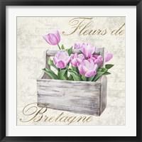 Framed Fleurs de Bretagne