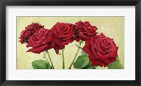 Framed Rose Rosse